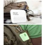 Nut New Design (PreOrder)