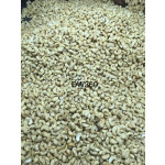 Vietnamese Cashew Nuts Kernels DW360